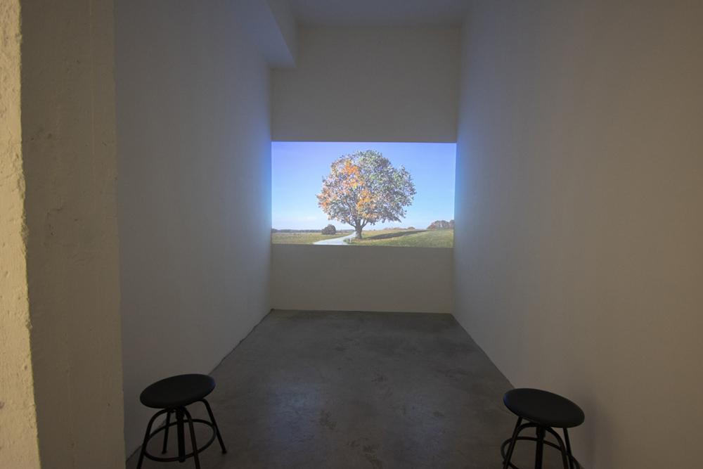 Михаел Зайлщорфер. Антиесен, 2012 - 2013, видео 12:13', 3/3+2AP. Със съгласието на: галерия Кьониг, Берлин