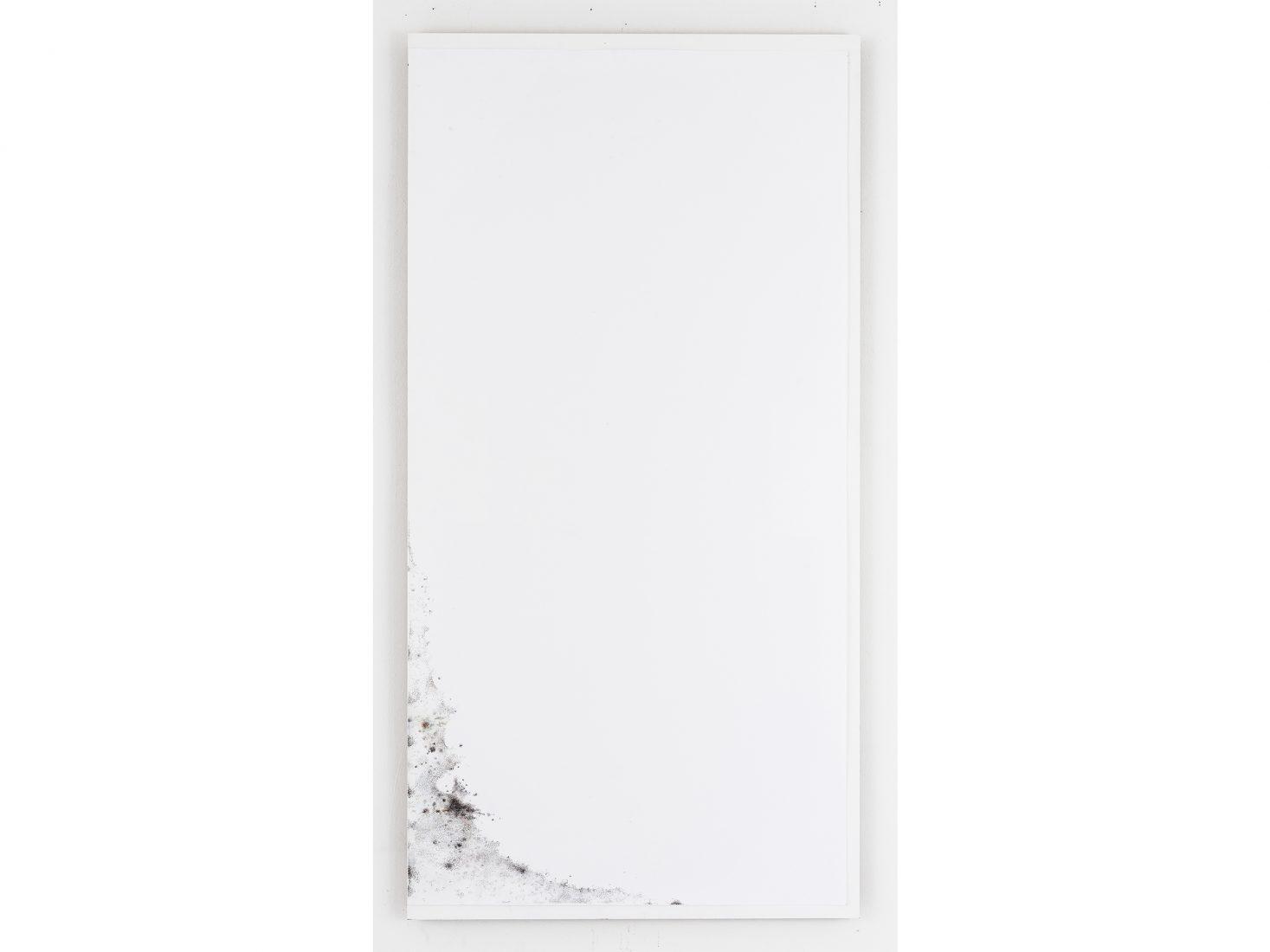 Михаил Михайлов. Мухъл (Прах при прахта)#4, 2020, цветен молив върху хартия, 138х69 см