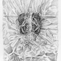 Без заглавие II, 2019, рисунка с молив, 110х75 см